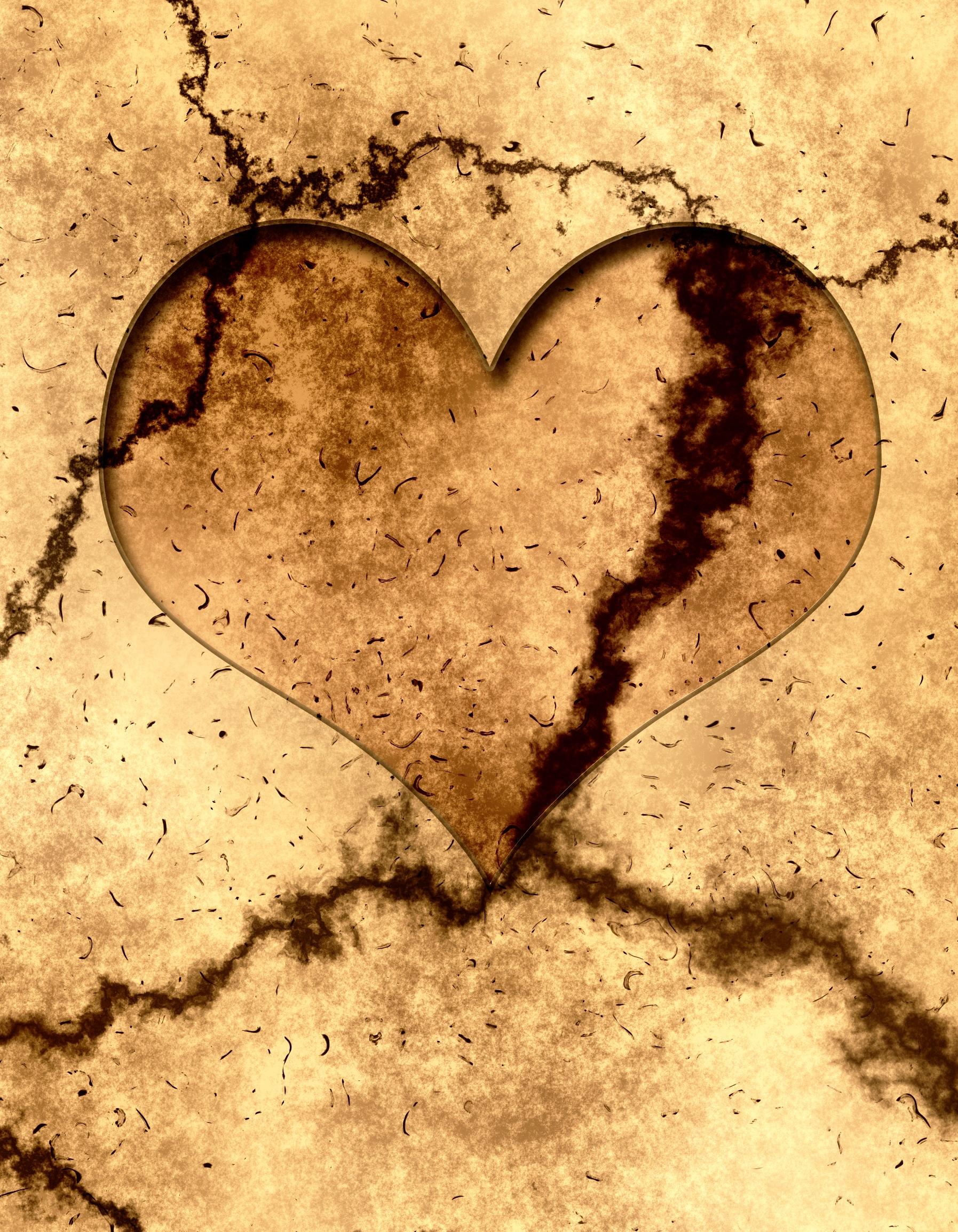 heart-401499